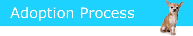 adoption-process-banner