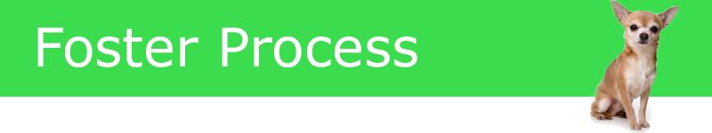 foster-process-banner
